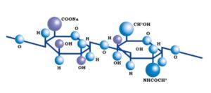 уколы гиалуроновой кислоты