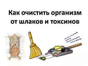 очищение организма от шлаков и токсинов Очищение организма от шлаков, токсинов и общей зашлакованности