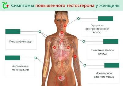 Muzhskoj-gormon-u-zhenshhin