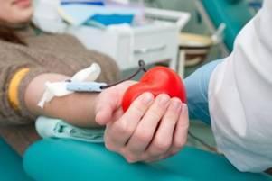 5 10 Как часто можно сдавать кровь донорам без вреда здоровью