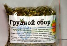 grudnoj-sbor-ot-kashlya