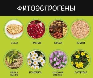 estrogeny-v-produktax