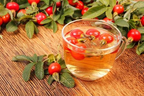 Как заварить шиповник правильно: запарить сушеные плоды или настаивать свежие ягоды, как пить