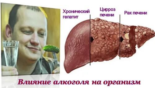 kak-alkogol-vliyaet-na-pechen