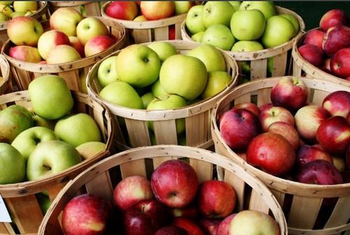 Чем полезны яблоки для здоровья, химический состав